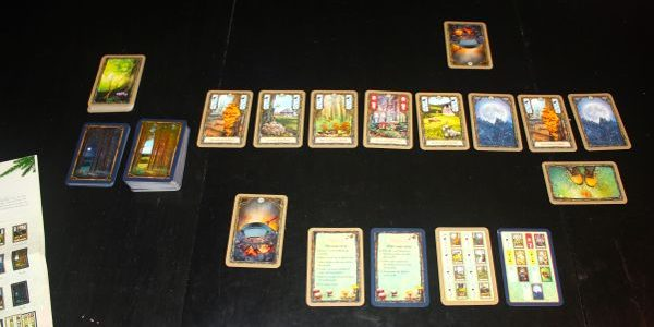 Fungi in the Forest: Reviewing the 2-Player Card Game
